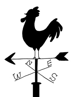 Weather-looking chicken (black)