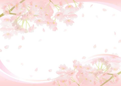Cherry frame 51