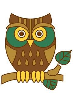 Owl 4c