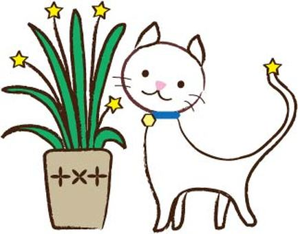 Hoshi flower and white cat