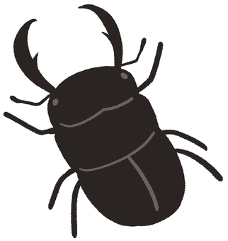 Stag beetle (male)