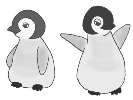 Penguin's baby