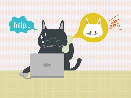 PC에 문제의 고양이