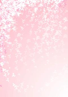 櫻花圖像背景1