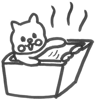 Hoko cat with a bath