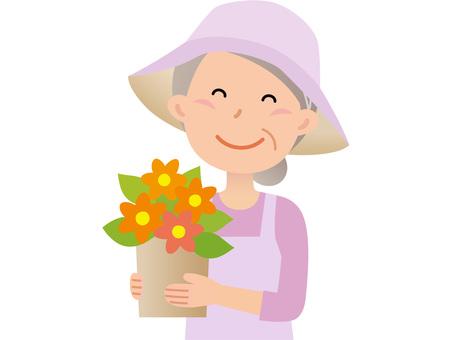 60711. Senior women, gardening