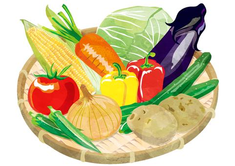 ざるにのった野菜