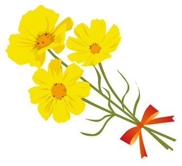 Yellow cosmos bouquet