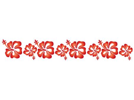 Hibiscus - 007