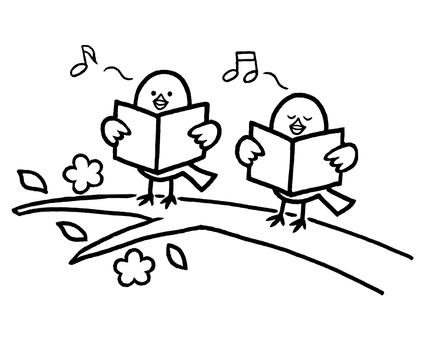 琴鸟合唱团