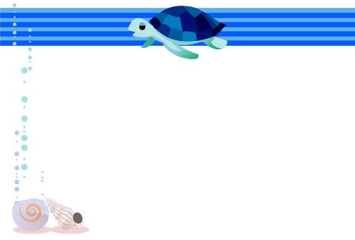 Sea turtle and shellfish 2