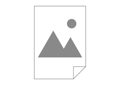 Image data image icon