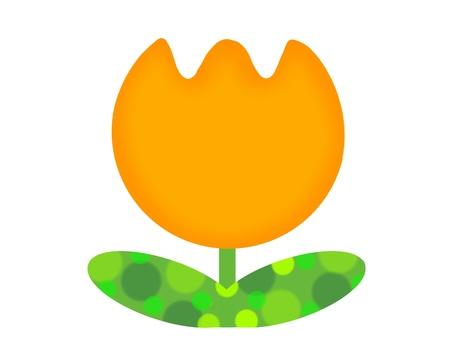 Big tulip orange