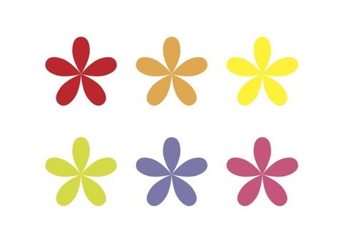 6 color flowers