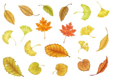 Fall leaves set material