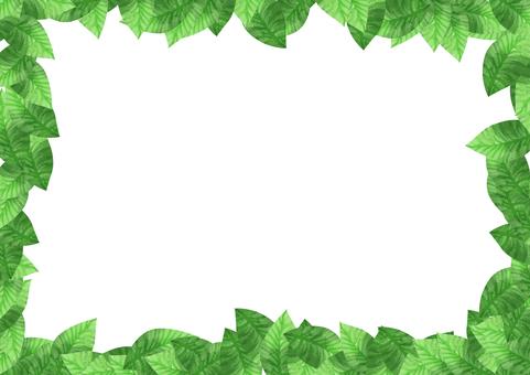 水彩 葉 四方 フレーム