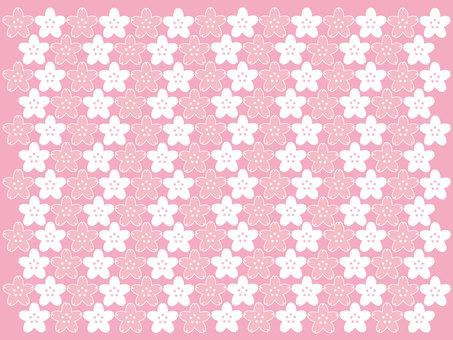 Cherry blossom pattern 4