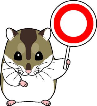 Djangarian hamster 2