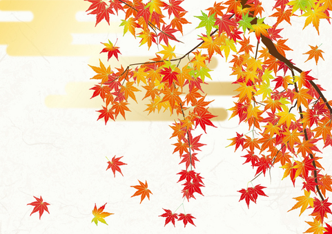 Japanese paper background _ autumn leaves
