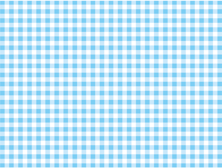 Plaid - light blue