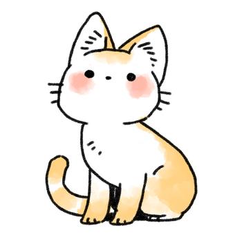 고양이 씨