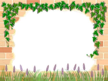 Brick Frame Ivy · Lavender