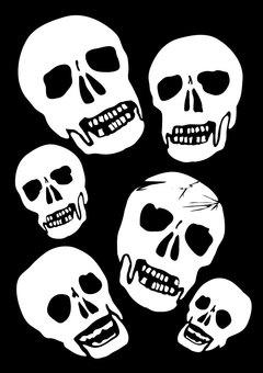 ドクロ、ガイコツ、スカル、頭骨