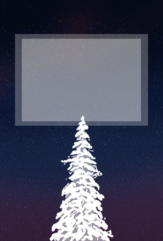 Winter starry sky