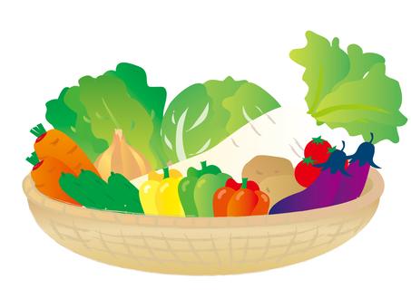 Vegetable various baskets 3 _ CS