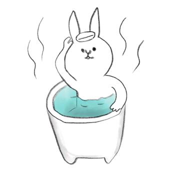 Rabbit bathing