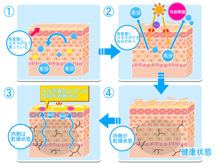 Process of progress to inner dry skin