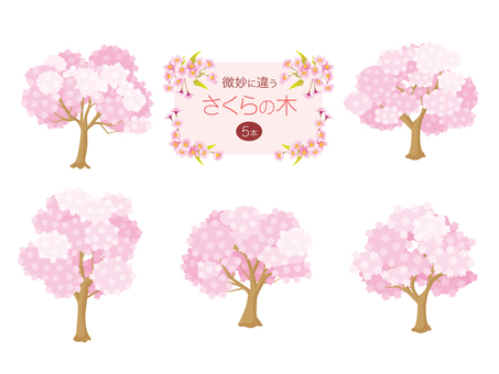 Slightly different Sakura tree 5 sets