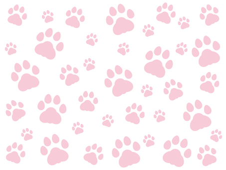 Paw data background material