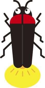 Firefly firefly