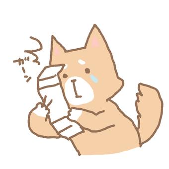 If you draw a Senkuji ...