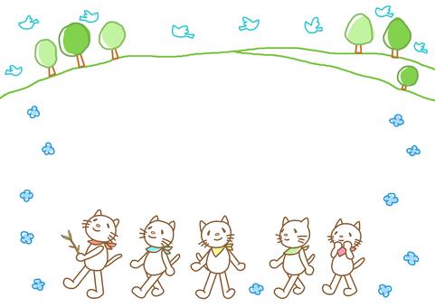Spring cat walk
