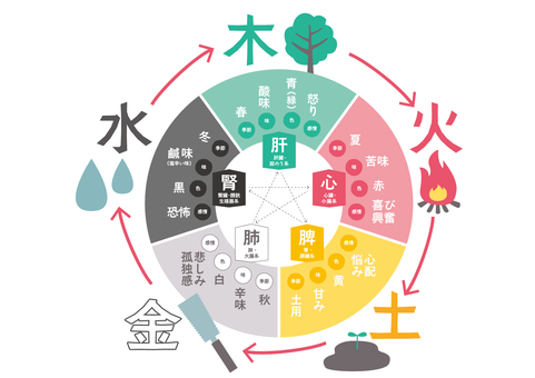 陰陽五行・五元素・五色・五臓の図