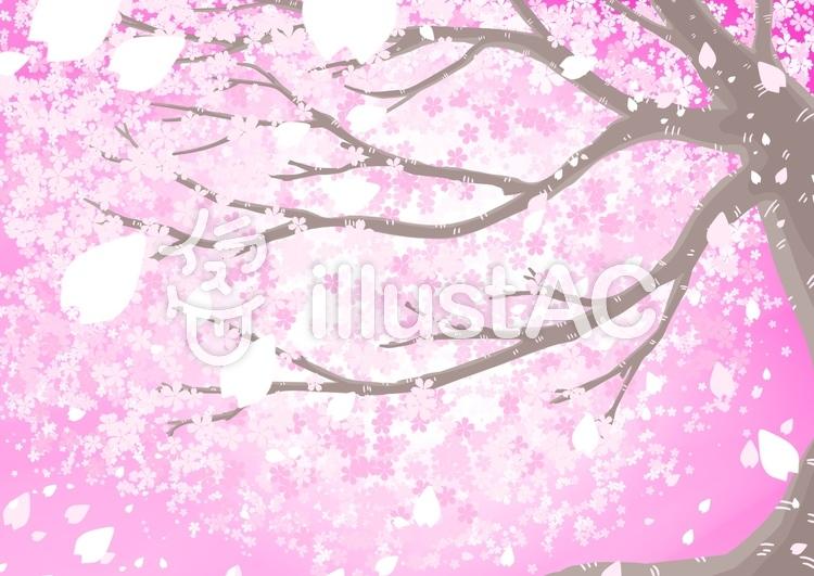 見上げた桜の木イラスト No 740921無料イラストならイラストac