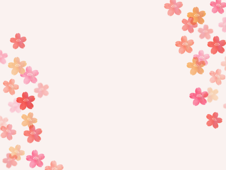 Background - Cherry Blossoms 26
