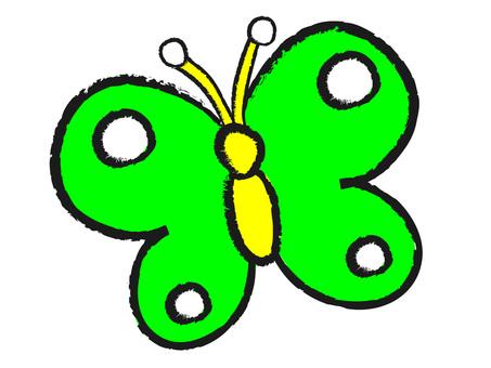 Midori's butterfly