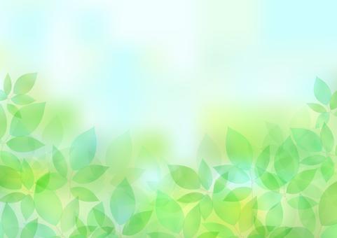 Fresh green material 63
