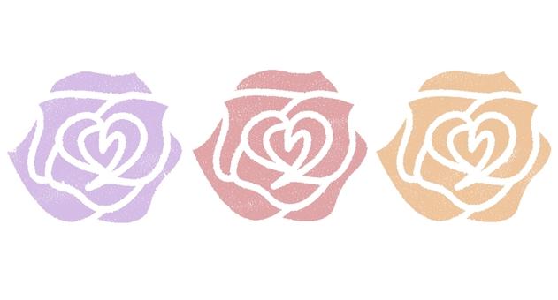玫瑰花柔和的顏色