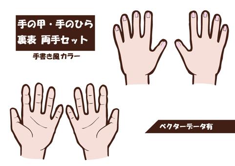 손등 손바닥 세트 (컬러)