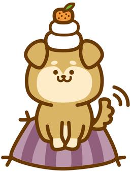 Kagami cake dog