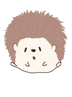 Hedgehog-kun