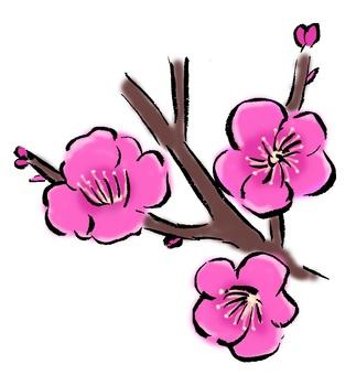 Plum blossoms (brush)