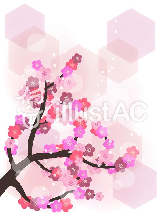 梅の壁紙和風水彩背景イラスト No 1017215無料イラストなら