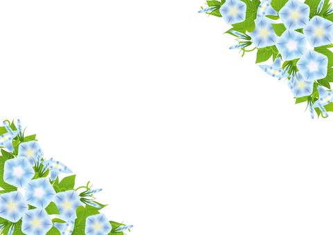 나팔꽃 68