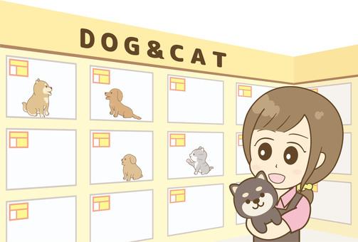 애완 동물 가게 점원 06