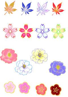 꽃 소재 세트
